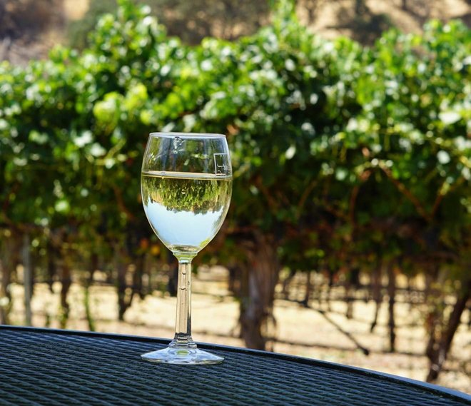The Best Contra Costa County Wineries Near Oakley, CA